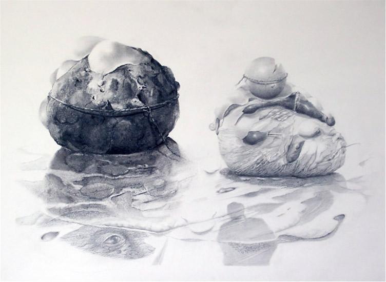 'Landing' Gemaakt naar het thema 'evolutie'De tekening is gedeeltelijk (links) met houtskool en met tekenpotloden (rechts) in verschillende hardheden gemaakt. 50 x 65, © 2007, prijs op aanvraag Tweedimensionaal | Tekenkunst | Stift / Krijt / Potlood