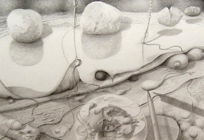 'Verborgen Schoonheid' Thema: Evolutie 20 x 29, © 2007, prijs op aanvraag Tweedimensionaal | Tekenkunst | Stift / Krijt / Potlood