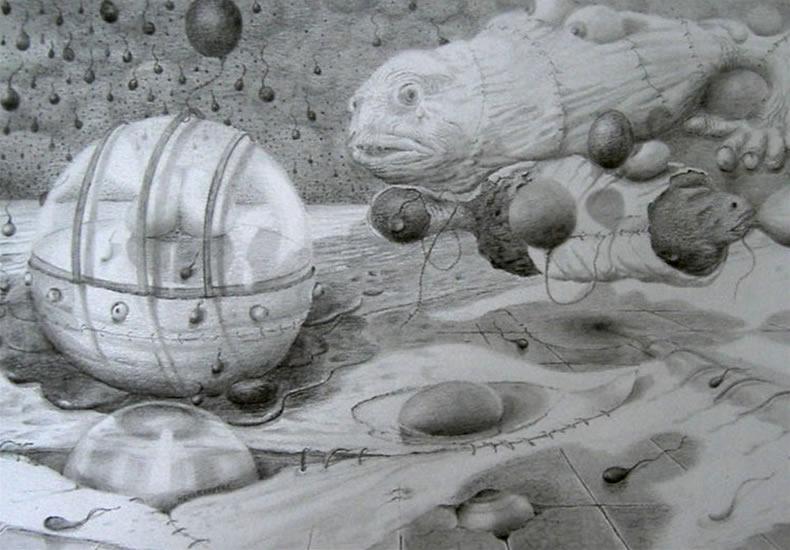 ' verwondering' Thema:Evolutie 20 x 29, © 2007, prijs op aanvraag Tweedimensionaal | Tekenkunst | Stift / Krijt / Potlood