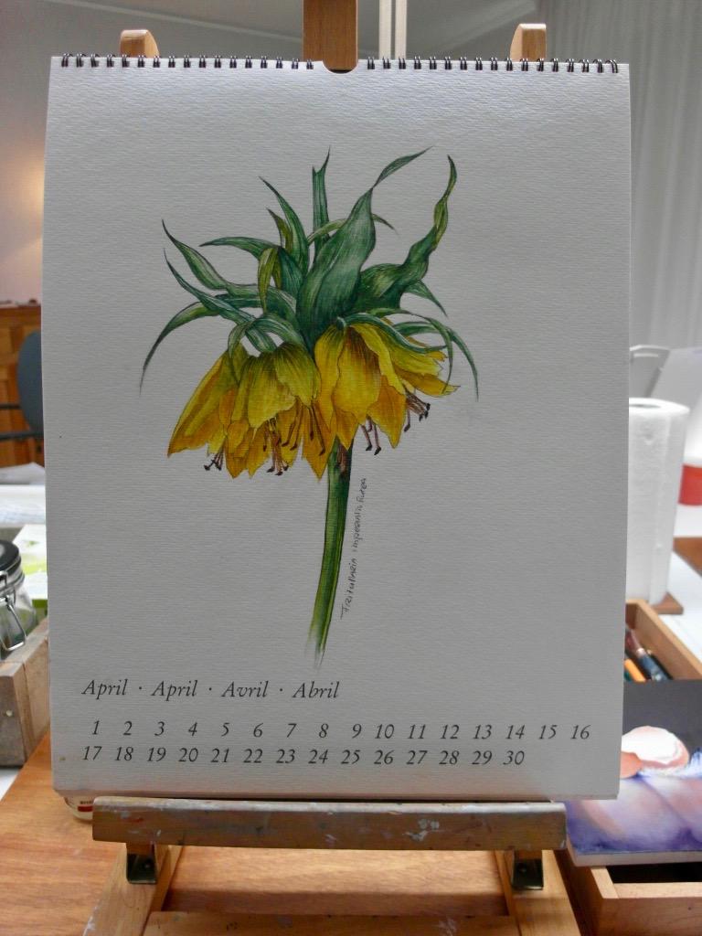 Aquarel van Kalender